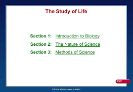 100 biology section 29 4 review answer key chapter 6