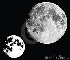 black and white moon vector stock images image 13248584 black