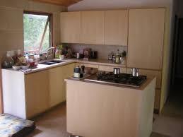 ash kitchen cabinets modern kitchen cabinets white ash google search kitchen