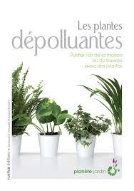 plante d駱olluante bureau amazon fr les plantes dépolluantes ariane boixière geneviève