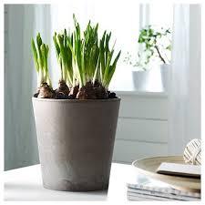 Unique Plant Pots Garden Design Garden Design With Unique Outdoor Flower Pots