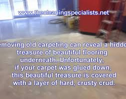 Hardwood Floor Removal Flooring Remove Carpet Padding Glue From Concrete Beautiful