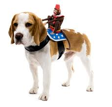 Halloween Costumes Large Dogs Halloween Costumes Large Dogs Favorite Dog Costumes