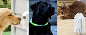Gadgets For Pets Do It Yourself Creative Gadgets For Pets