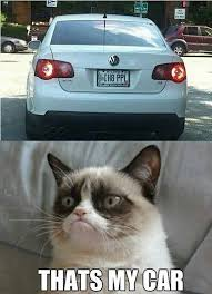 The Grumpy Cat Meme - the grumpiest grumpy cat memes to sadden your day snappy pixels