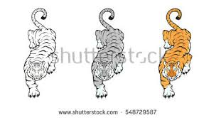 tiger stock images royalty free images u0026 vectors shutterstock