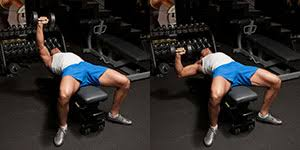 Straight Bench Press Dumbbell Chest Exercises Archives Weight Training Exercises 4 You