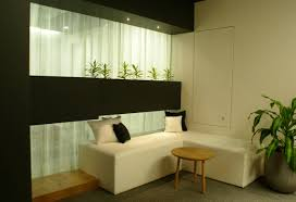 office plants interior design ideas