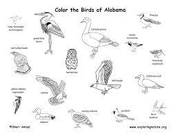 alabama habitats mammals birds amphibians reptiles