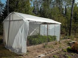 greenhouse diy plans homemade greenhouse ideas for kids u2013 come