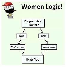 Meme Woman Logic - women logic do you think i m fat no you re lying you re mean i