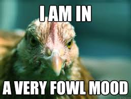 Anti Joke Chicken Meme - if anti joke chicken memes are funny why is it called the anti