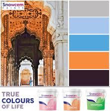 snowcem paints private limited linkedin