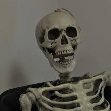 Halloween Skeletons Life Size by Halloween Skeletons Life Size
