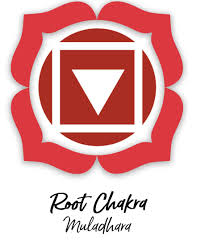 root chakra 7 chakras a beginners guide for healers and empaths self care