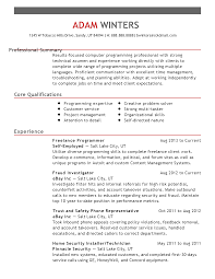 Programming Resume Examples by Freelance Programmer Resume Free Resume Example And Writing Download