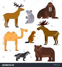 wild animals flat cartoon isolated icons stock vector 482822431