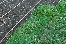 Sod Estimate by Sod Installation Estimate Eagle Sprinkler Repair