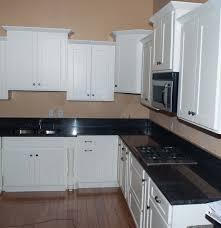 Black Shaker Kitchen Cabinets Kitchen Cabinet Shaker White Monsterlune