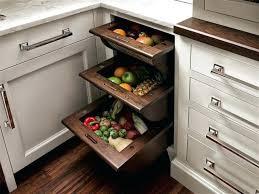 walk in kitchen pantry ideas walk in pantry ideas for kitchen gerardoruizdosal info