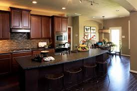 Hgtv Kitchen Design Beautiful Hgtv Kitchen Remodels Eizw Info