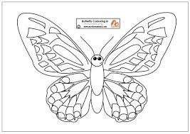 coloring pictures small butterflies flower mandala coloring