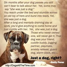 coping with loss of pet losing a dog quotes simple top 100 greatest dog quotes and sayings