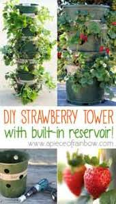 Diy Garden Crafts - home gardening craft ideas at allcrafts net free crafts network