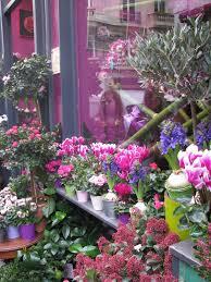 flower shops in 208 best flower shop facades images on shop fronts