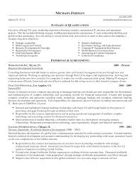 Executive Summary Example For Resume by 9 Professional Summary On Resume Executive Summary Resume