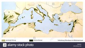 Map Mediterranean Map Spread Olive Tree Mediterranean Area Stock Photo Royalty Free