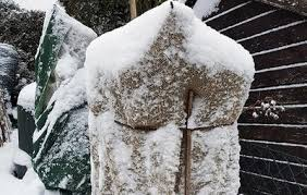 7 simple steps to winterize your garden prevention