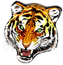 image tiger tattoos designs 81 1 png animal jam clans wiki