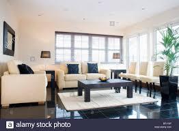 define livingroom living room monochromatic color scheme images what is