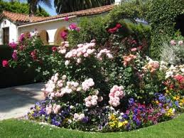 small flower bed ideas flower garden ideas designs zhis me