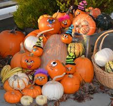 bay baby produce adds the royalty to its ornamental pumpkin line