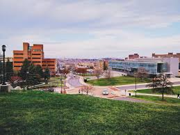 Touro University Worldwide Best Colleges With Marriage And Family Therapy Counseling Degrees