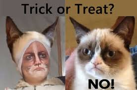 Grumpy Cat Yes Meme - grumpy cat halloween memes yes memes