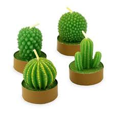 wedding favors candles i am stuck on you cactus wedding favors candles buy wedding