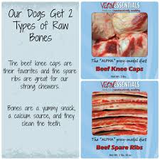 vital essentials prey raw dog food review keep the tail wagging