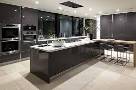 Modern Design Kitchen by Modern Kitchen Cabinet Design Dansupport