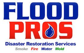 Basement Waterproofing Rockford Il - foundation wall repair basement waterproofing water