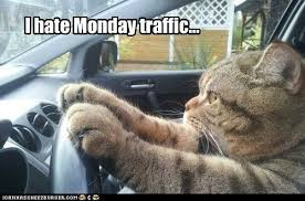 I Hate Mondays Meme - i hate monday traffic lolcats lol cat memes funny cats