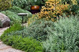 seeing the native plant garden photobotanic