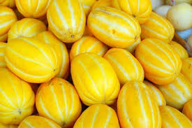 Blind Melon Wikipedia 25 Varieties Of Melons With Pictures