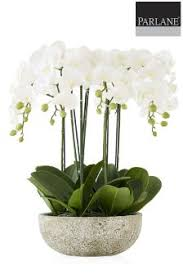 faux orchids parlane large potted faux orchid studio decorative accessories