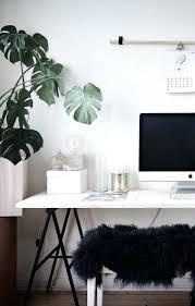 100 best plant for desk 100 plants for desk alluring large