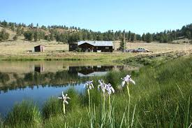 Barn Rentals Colorado 31 Mile Ranch Secluded Vacation Rental Royal Gorge Area South
