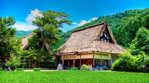 houses magnificent resort bungalow stilts water ocean beach house