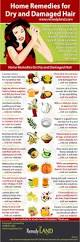 Natural Hair Growth Treatments Home Remedies For Dry And Damaged Hair Remedies Dry Damaged